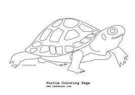 Small Picture Reptiles Amphibians Coloring Pages HubPages