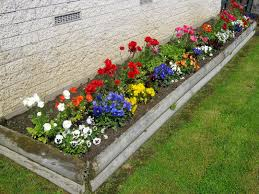 landscaping flowers in front of house - Google Search