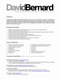 Examples Of Professional Profile On Resume Examples Of Profiles for Resumes Fresh Examples Professional Profile 24