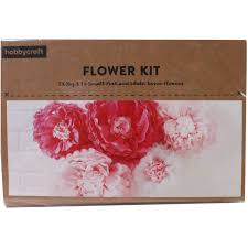Paper Flower Kit Pink And White Tissue Paper Flowers 5 Pack