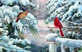 winter cardinal wallpaper. Modren Winter Winter Cardinals On Cardinal Wallpaper 0