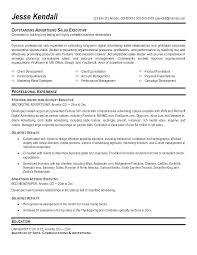 Advertising Account Manager Resume Advertising Resume Examples