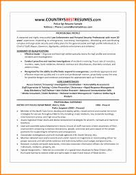 Amazing Security Officer Resume Summary Gallery Resume Samples