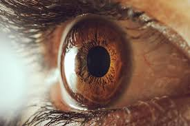 cascade vision center is one of the few practices in the area to offer fda approved dry eye disease device to it s patients