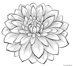Printable coloring page, flowers stress relieving patterns, rose in pot design with butterflies and dragonfly, instant download. Adult Dahlia Flower Coloring Pages Printable