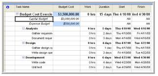 Psg Blog How To Track Budgets In Project 2007