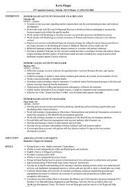 Senior Sales Account Manager Resume Samples Velvet Jobs