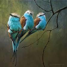 bird prints on canvas wild stunning birds artwork for fine art home design 6