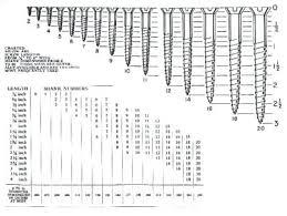 Screw Diameter Chart Wood Screw Sizes Metric Fbaudienceblaster Co