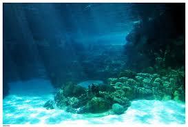 Ocean Floor Wallpaper-4QJCDBO.jpg ...