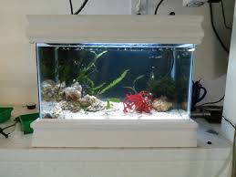 Funny Fish Tank Decorations 17 Best Images About Fish Tanks On Pinterest Caves Aquarium