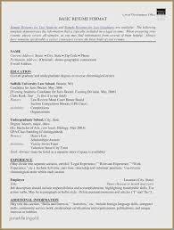 Volunteer Work On Resume Best Example Resume Showing Computer Skills Unique Volunteer Work Resume