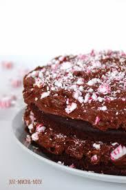 Merry Minty Chocolate Peppermint Cake grain free & honey sweetened}