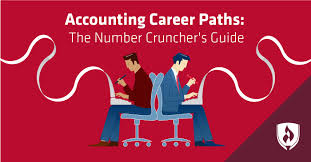 Accounting Career Progression Chart Accounting Career Paths The Number Crunchers Guide