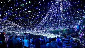 Christmas Light Christmas Lights In Canberra Youtube