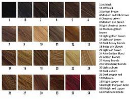 Blonde Hair Color Chart Anagen Hair