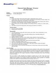 Channel Sales Manager Resume Sample Sales Coach Job Description Template Ideas Of Essay Car Manager 16