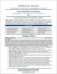 Healthcare Executive Resume Example Operations Manager Examples