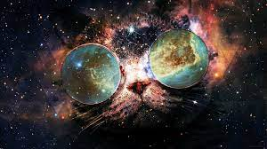 Cats in Space Wallpapers - Top Free ...