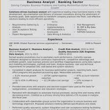 Business Analyst Resume Samples New Fancy Business Analyst Resume ...