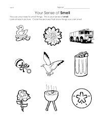 5 Senses Coloring Page My Pages G This Has A Lot Of Free Printable