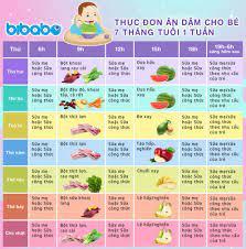 Thực đơn ăn dặm truyền thống cho bé 7 tháng - Tuần 1 (Dành cho bé ăn dặm  tích cực - Ngày ăn 1-2 bữa) - bibabo.vn