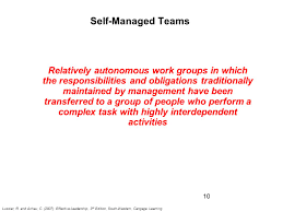 Leading Self Managed Team Ppt Video Online Download