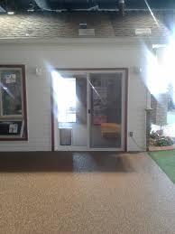 hale in glass dog door