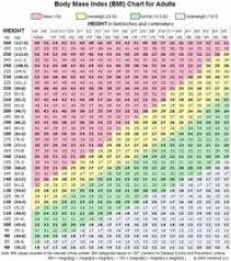 Body Fat And Weight Chart Rome Fontanacountryinn Com