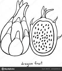 Dragon Fruit Kleurplaat Grafische Vector Zwart Wit Kunst F