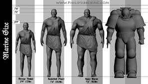 Space Marine Height Chart Space Marine Morphology Philip Sibbering