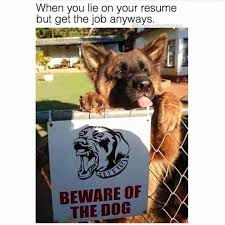 Dopl40r Memes When You Lie On Your Resume But Get The Job Enchanting When You Lie On Your Resume