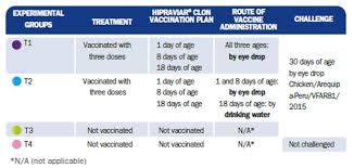 Chicks Vaccination Chart Cloned Vaccines Against Newcastle Disease Virus