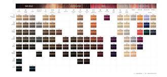 Igora Color Chart Schwarzkopf Professional Igora Royal Core Assortment In