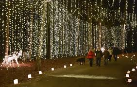 galaxy of lights schedule set at