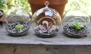 inspiring diy hanging terrarium with glass globe and pebble