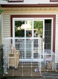 1000 ideas about outdoor cat enclosure on pinterest cat enclosure outdoor cats and cat run cat lovers 27 diy