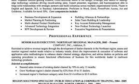 Great Executive Resume Samples Eliolera Com