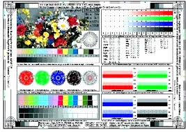 Color Print Test Page Pdf Printer Packed With Coloring Pages For