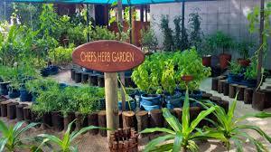 Herb Garden The Herb Garden On Kuredu