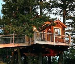 basic tree house pictures. Easy Treehouse Plans Kids Tree House Designs Free Plan Creative Ideas Of Basic . Pictures