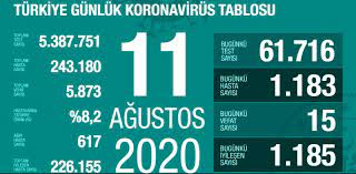 11 Ağustos Salı koronavirüs tablosu Türkiye! Koronavirüsten dolayı kaç kişi  öldü? Bugün koronavirüs vaka, iyileşen, ağır hasta sayısı son durumu ne? -  Haberler