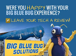 Big Blue Bug Solutions Big Blue Bug Solutions Google