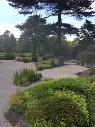 japanese garden design with racked pattern gravel with rocks grasses and low shrubs