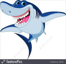 aquatic wildlife cartoon funny shark isolated on white background