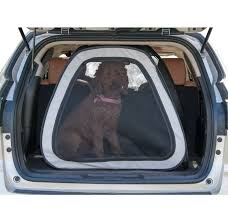 Best Dog Crate for Car