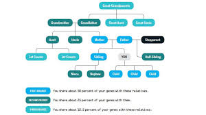 How To Make A Genealogical Tree What Your Family Tree Can Tell You About Your Health Health
