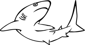 Small Picture Tiger Shark Coloring Book