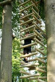 simple tree house designs. Four-Sided Rope Ladder | 15 Awesome Treehouse Ideas For You And The Kids! Simple Tree House Designs