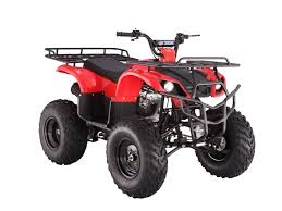 cheap 250d atvs taotao atv 250d models tao tao 4 wheelers taotao atv 150cc at Tao Tao Atv Parts Diagram